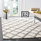 Safavieh Dallas Shag Collection SGD258F Ivory and Grey Area Rug (5'1' x 7'6')