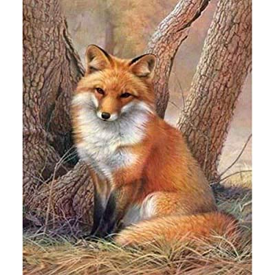 Full Drill 5d Diamond Painting Kits Cross Stitch Craft Kit New DIY Kits for Kids Adults Paint by Number Kits (Fox, 25x30cm, Round Drill): Toys & Games