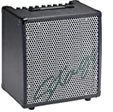 Stagg KBA40 USA 30-Watt HD Combo Amplifier for Keyboard