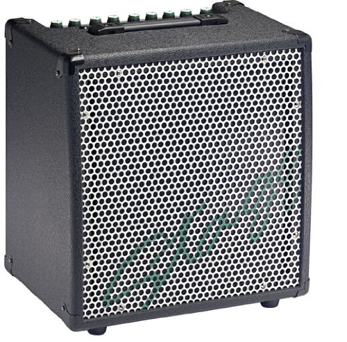 Amplifier Combo 30 Watt (Stagg KBA40 USA 30-Watt HD Combo Amplifier for Keyboard)
