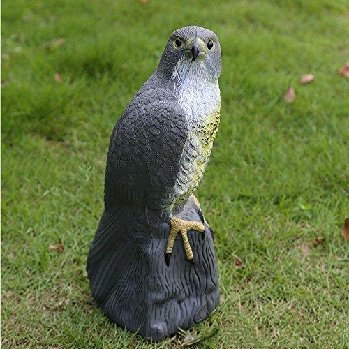 SODIAL Large Falcon Decoy Bird Deterrant,Lifelike Full Bodied Bird Of Prey Pest Control Garden Statue Cat And Bird Repeller Garden Pond Decoration