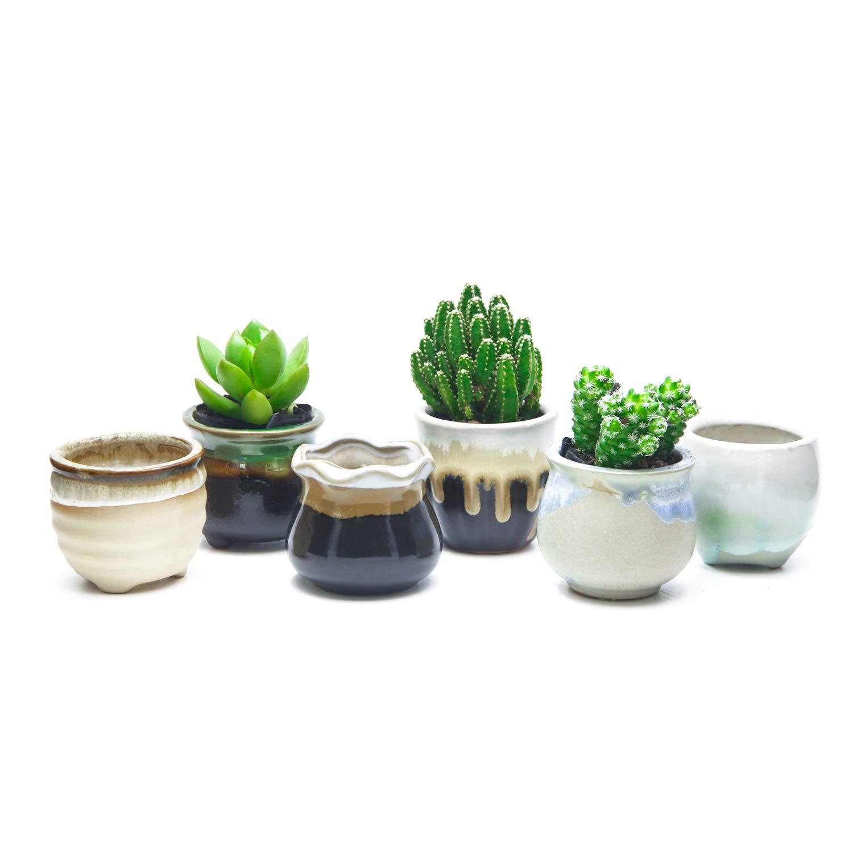 goldblue Succulent Pot Ceramic Succulent Plant Pot Cactus Plant Pot Flower Pot Container Planter Flowing Glaze Black White Base Plant Pot Pack of 6