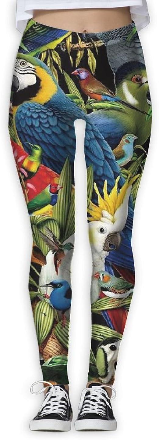 Toddler Kids Men/'s Plus Size Running Costume 5188 Toucan Leggings Cute Bird Lover Yoga Pants Tropical Style Capris Shorts Cosplay Dance