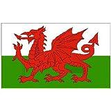 5ft X 3ft Pays de Galles gallois dragon drapeau national