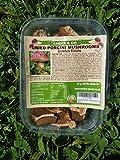 CHEFS & CO Dried Porcini (King Bolete) Mushrooms 25 g