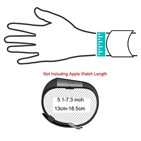 Amazon Com Carambola Bands For Apple Watch Adjustable Replacement