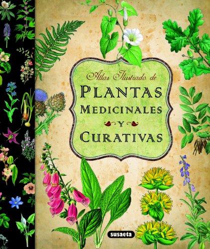 Descargar Libro Plantas Medicinales Y Curativas Equipo Susaeta