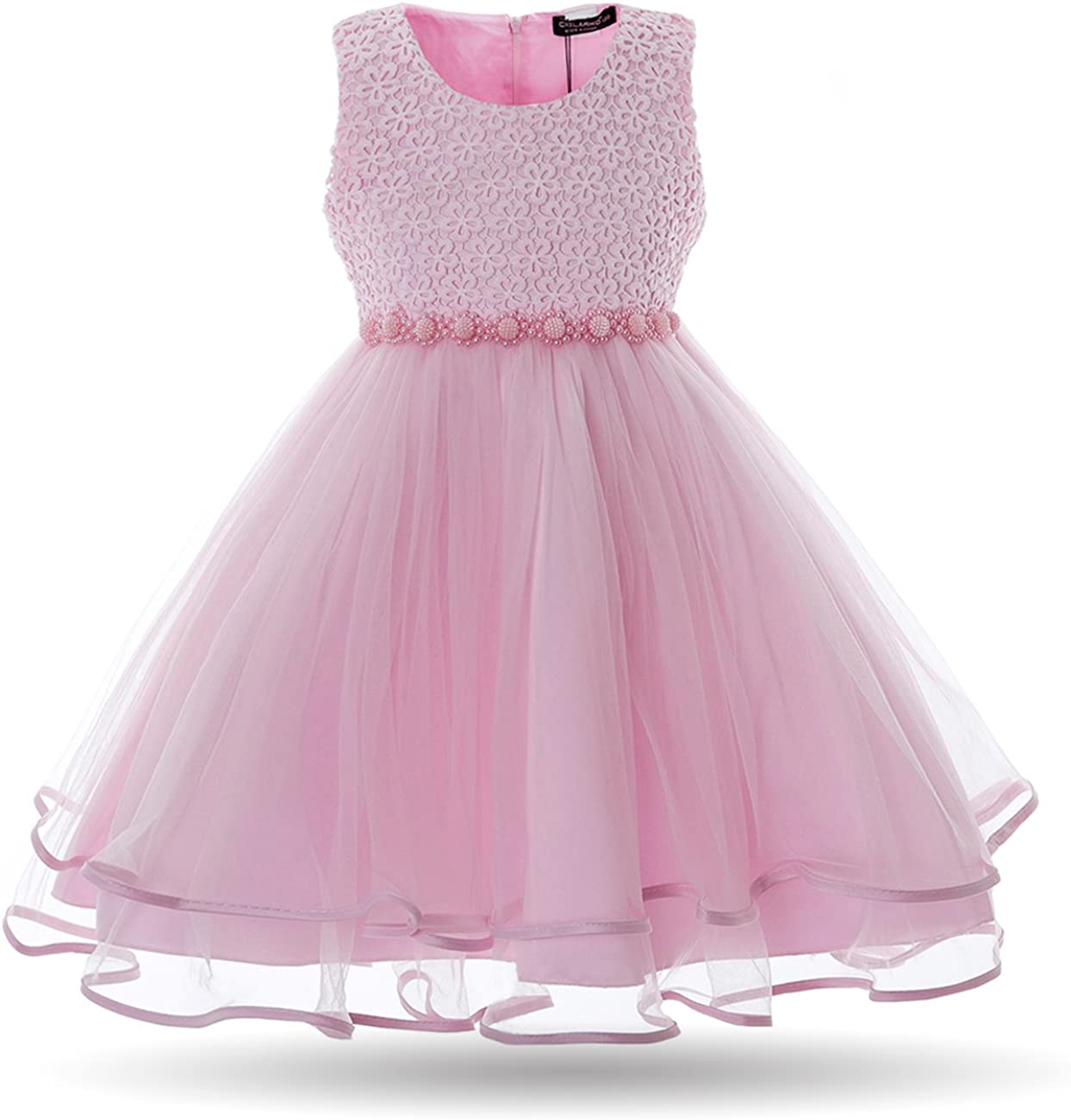 Cielarko Children Girl Dress Butterfly Flower Embroidery Formal Wedding Party Dresses for Girls 2 to 11 Years