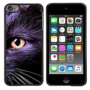 Cubierta protectora del caso de Shell Plástico || Apple iPod Touch 6 6th Touch6 || Negro gatito Bombay Chartreux Cat Eye @XPTECH