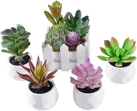 SPDYCESS 5 Piezas Plantas Artificiales Suculentas con Maceta para Interior y Exterior - Mini Plantas Artificiales Verdes Decorativos Pequeñas para Casa, Jardín, Decoración: Amazon.es: Hogar
