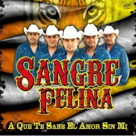 Amazon.com: Los Pasos Del Señor: Sangre Felina: MP3 Downloads