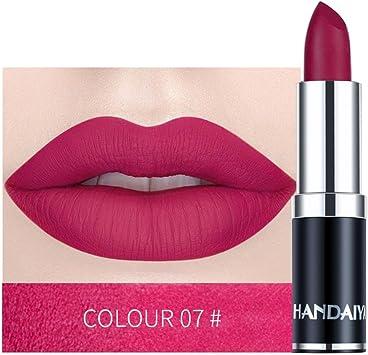 AMUSTER Rouge à lèvres imperméable mat couleur citrouille rouge à lèvres rouge à lèvres Matte Longue durée Lèvres Maquillage (G)