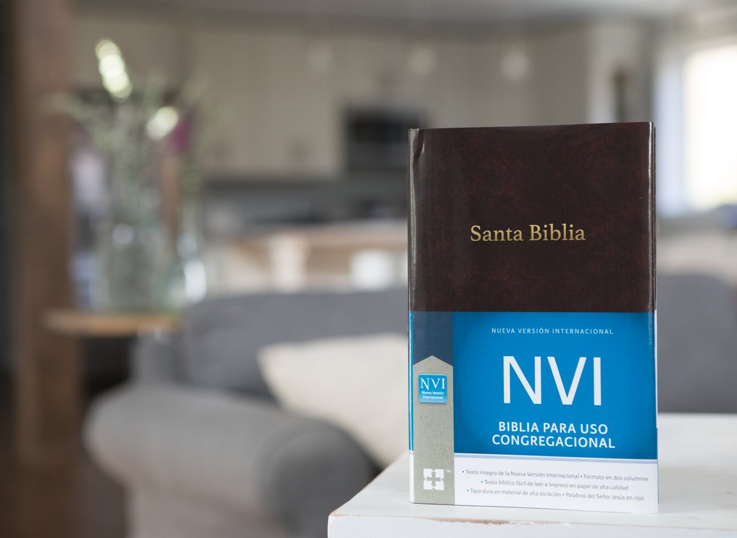Santa Biblia Congregacional NVI - Tapa Dura Vino (Spanish Edition): NVI-Nueva Version International: 9780829768404: Amazon.com: Books