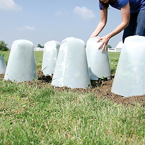 Grow It Now! - Plant Protectors/Frost Guards with Closable Vent, Pack of 3 (Anchor pins not included) (Large)