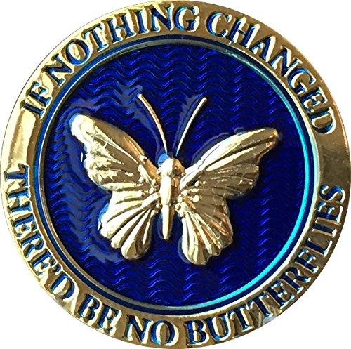If Nothing Changed Thered Be No Butterflies Reflex Blue Gold Plated Medallion Butterfly Chip