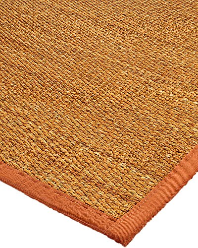 NaturalAreaRugs Sedona Collection Mt. Grass Fiber Area Rug, Handmade in USA, Mountain Grass, Non-Slip Latex Backing, Durable, Stain Resistant, Eco-Friendly (5 Feet x 8 Feet) Sienna Border