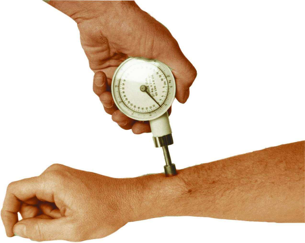 Amazon.com : ALGOMETER DYNAMOMETER : Other Products : Everything Else