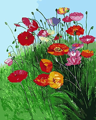 Paint by Number Kits DIY Oil Painting by Arts Language - Red Poppy - Painting by Numbers On Canvas for Adults Kids Beginner(16x20 inch, with Wood Frames Installed by Yourself)