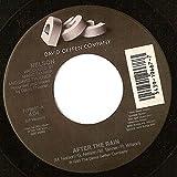 After the rain (1991) / Vinyl single [Vinyl-Single 7'']