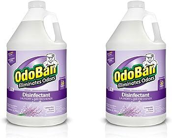 2-Pack OdoBan Multipurpose Disinfectant Laundry and Air Freshner