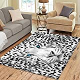 Cheap InterestPrint Wild Animal Tiger Print Area Rugs Carpet 7 x 5 Feet, White Black Leopard Zebra Modern Carpet Floor Rugs Mat for Children Kids Home Living Dining Room Playroom Decoration