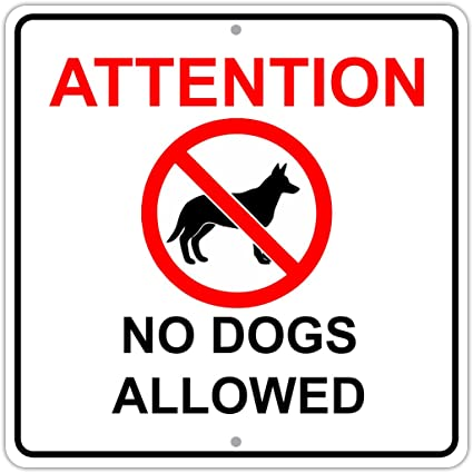 Amazon Com Attention No Dogs Allowed Private Property Aluminum Metal 12x12 Sign Garden Outdoor