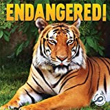 Endangered!, Barb Webb, 1617419745