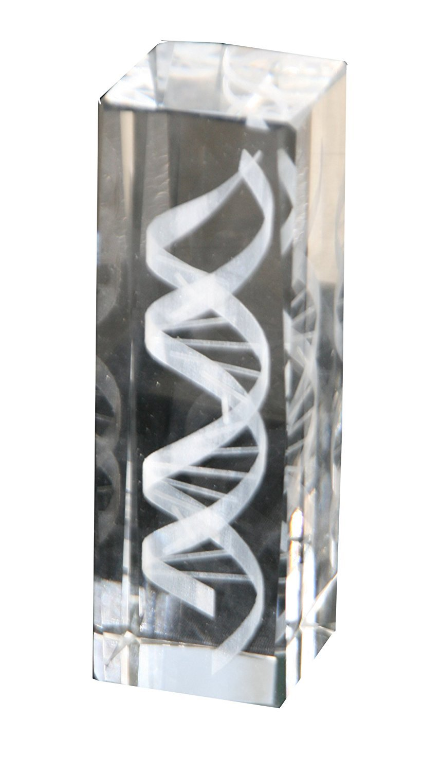 DNA Helix Crystal Statue (6 Inches in Height)