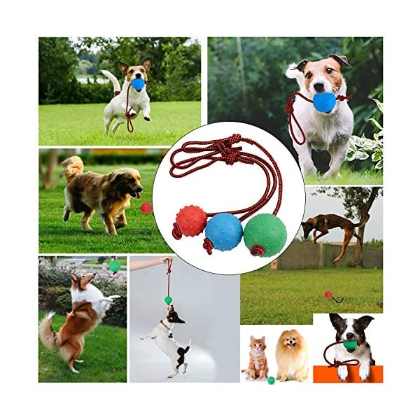 Legendog Dog Rope Ball, 3 Pcs Ball on a Rope Dog Toy Natural Elastic Solid Rubber Dogs Balls Chew Toys for Small Dogs (Multicolor-3PCS) 4