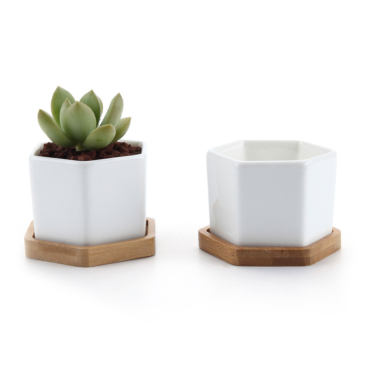 "T4U 2.75"" White Ceramic Pots Hexagon Succulent Cactus Planter with Free Bamboo Tray for Home Decoration 1 Pack of 2"