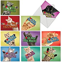 Cat Love You This Much: 10 Assorted Blank All-Occasion Note Cards Featuring Cats Holding Their Arms Wide to Show You How Much They Love You, w/White Envelopes. M6610OCB