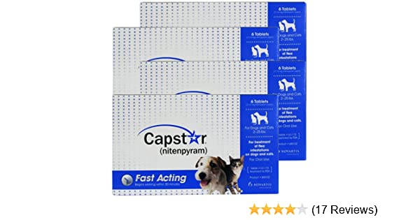 Amazoncom 4 Pack Capstar Blue For Dogs Or Cats 2 25 Lbs24