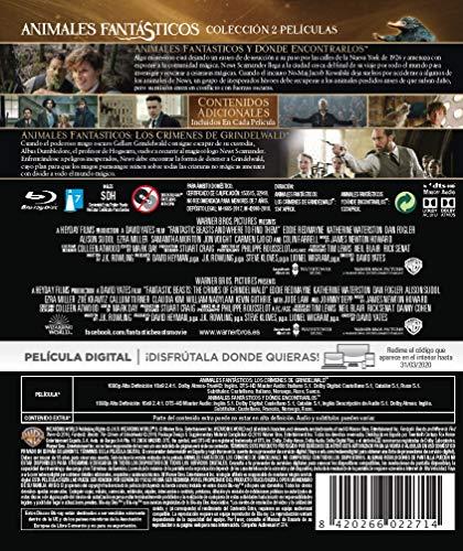 Animales Fantasticos Y Como Encontrarlos + Animales Fantásticos: Los Crímenes De Grindelwald Blu-Ray Blu-ray: Amazon.es: Eddie Redmayne, Johnny Depp, Katherine Waterston, Dan Fogler, Jude Law, David Yates, Eddie Redmayne, Johnny Depp: Cine
