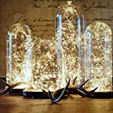 DWR LED Starry String Lights ,Fairy Micro LEDs Lights Battery Christmas Decoration Warm Lamp Wedding Light (4PCS)