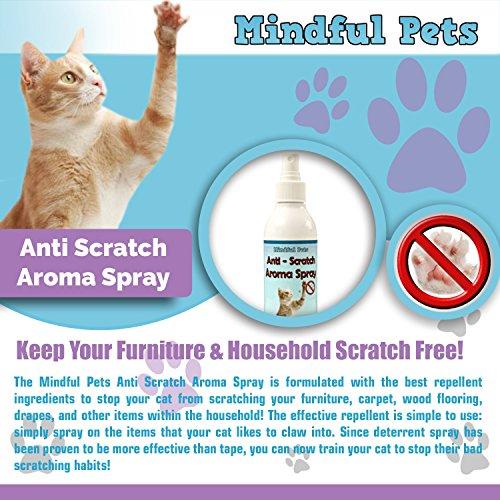 Cat Scratch Deter Spray Natural Training Solution