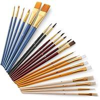 25Pcs Paint Brushes Set PaintBrushes Starter Kit Includes Taklon/Bristle/Horse Hair Brushes and Sponge Brushes for…