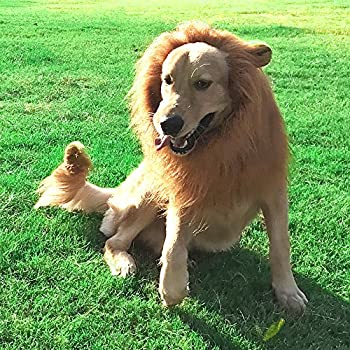 Lion Mane for Dogs- Realistic Dog Lion Mane Costumes Funny Dog Lion Mane Wig For Medium to Large Sized Dog With Ear &Tail (Brown)