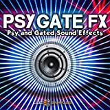 Psygate FX – Original and Unusual Gated Sound