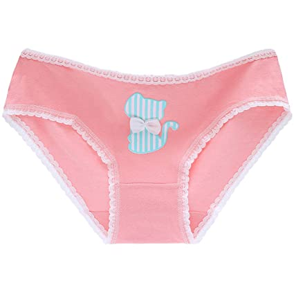 7ec2ecc04cd Image Unavailable. Image not available for. Color  Sinchi Kuzo Hot Cute Cat  Panties Underwear Women ...