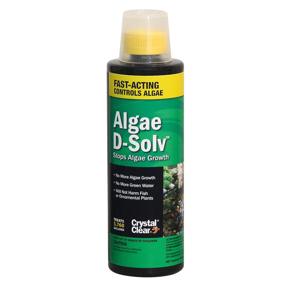CrystalClear Algae D-Solv 16 oz by CrystalClear