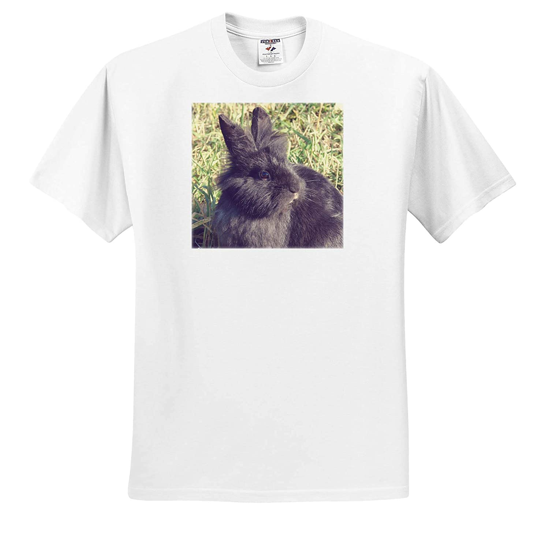 3dRose Cassie Peters Photography T-Shirts Black Lionhead Rabbit