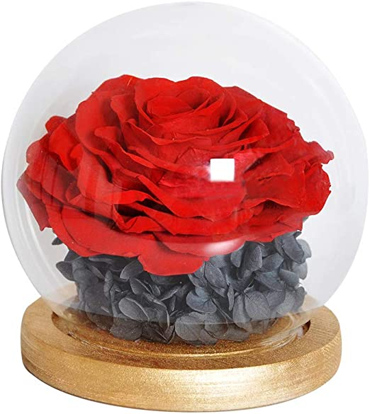 Eternal Rose Flower Great Gift Various Colors NEW FREE SHIPPING