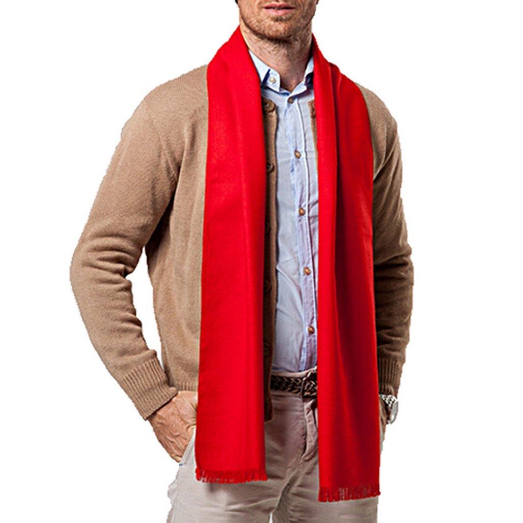 29f31698a8f1 Panegy - Echarpe Homme Hiver en Cachemire d imitation Longue Chaude Uni  Foulard Châle Epaisse à Franges Cadeau 180 30cm - Rouge