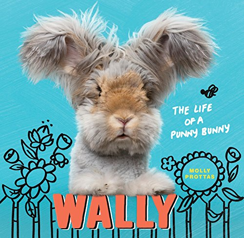 Wally: The Life of a Punny Bunny by CLARKSON POTTER