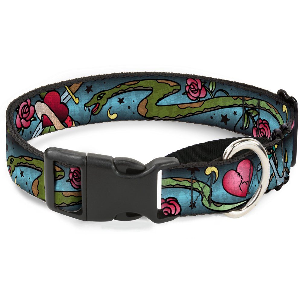 Buckle-Down Live Hard Die Young C U Turquoise  Martingale Dog Collar, 1.5  x 16-23  Medium
