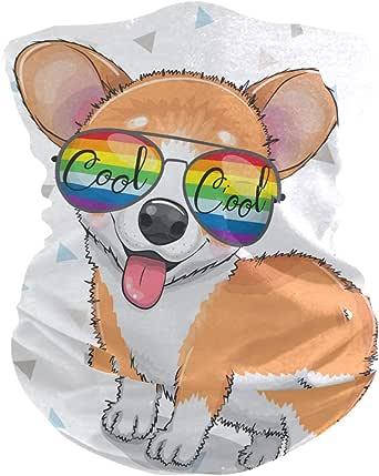 Amazon.com: ZZAEO Cute Cartoon Puppy Corgi Dog Sunglasses