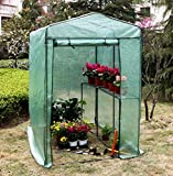 Gr8 Garden Large Walk In Outdoor Tomato Vegetables Greenhouse Grow Green House Shade Compact Metal Frame PVC Plastic Cover Plant Flowers Polytunnel With Shelves