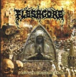 May God Strike Me Dead by Fleshgore (2006-05-09)