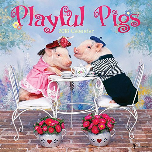 2018 Playful Pigs Wall Calendar Pig Wall
