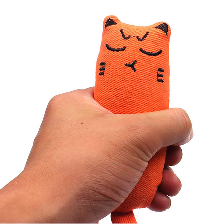 Legendog 5Pcs Catnip Toy, Cat Chew Toy Bite Resistant Catnip Toys for Cats,Catnip Filled Cartoon Mice Cat Teething Chew Toy (Multi-colored1)